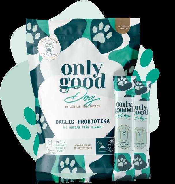 Hundprobiotika_OnlyGoodDog